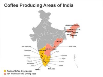 indiacoffee producing areas