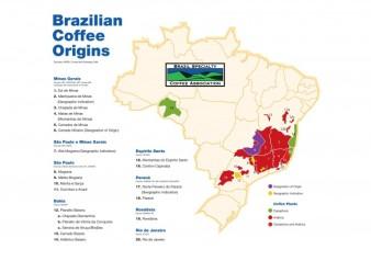 Mapa_BSCA_Regioes_Produtores-page-001-768x543