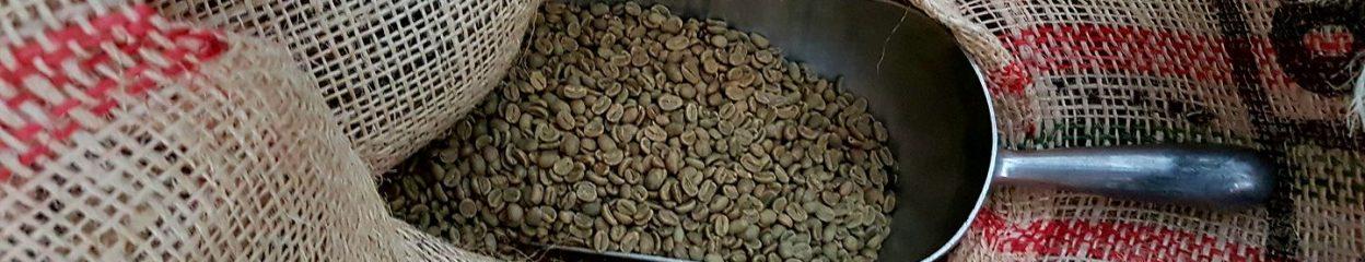 Green Raw Beans